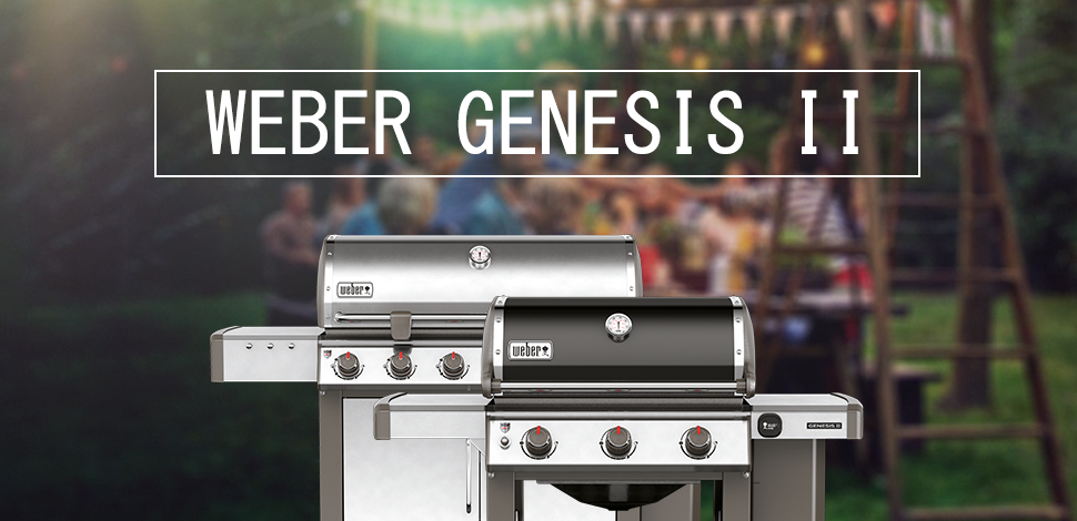 review weber genesis ii barbecue paving place blog. Black Bedroom Furniture Sets. Home Design Ideas