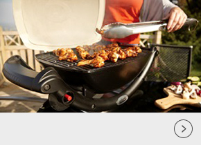 Weber Q Barbecues
